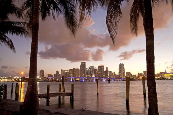 the illuminated Skyline of Downtown Miami,  Florida, USA