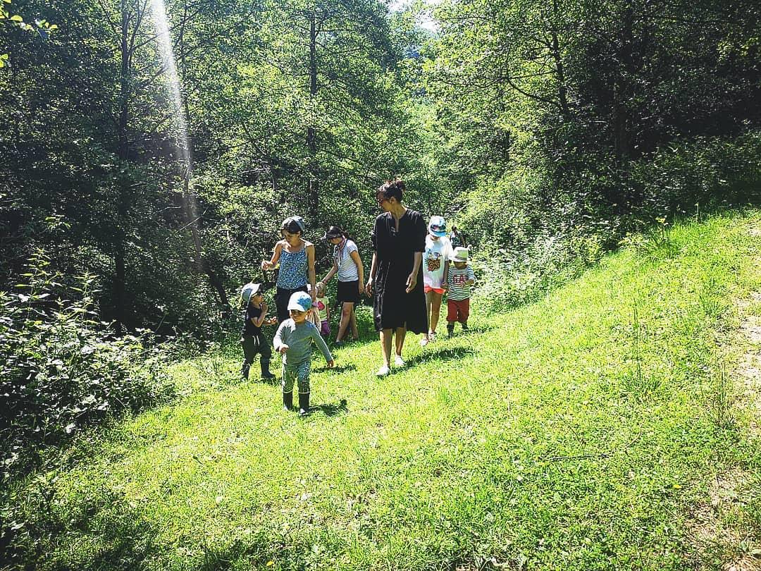 Bergman – Nature Kindergarten
