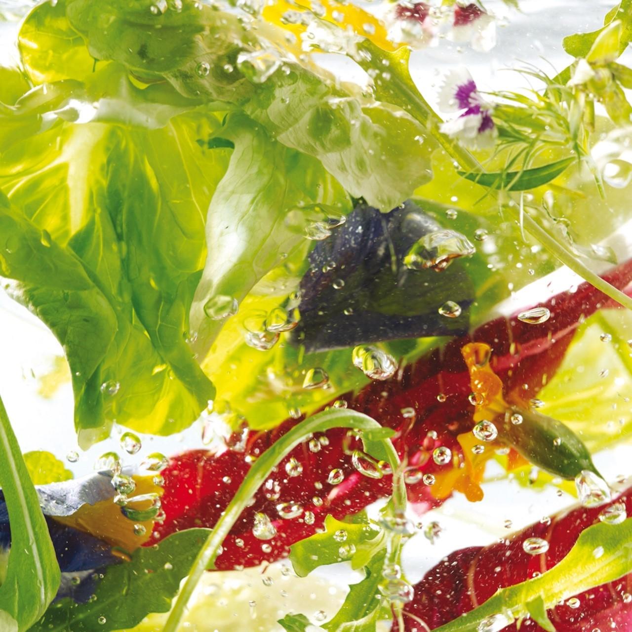 Salate (1)